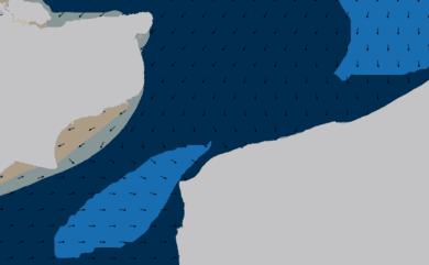 Prévisions de houle HD 96h Pas de Calais, Cap Gris Nez WAM 1km