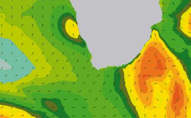 Prévisions de houle 11 à 16 jours Afrique du Sud WAM 54km