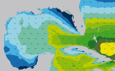 Prévisions de houle 11 à 16 jours Golfe du Mexique, Floride WAM 54km