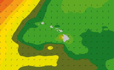 Prévisions de houle 1 à 10 jours Hawaï WAM 54km