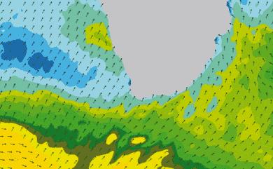 Prévisions de houle 1 à 8 jours Afrique du Sud WW3 54km