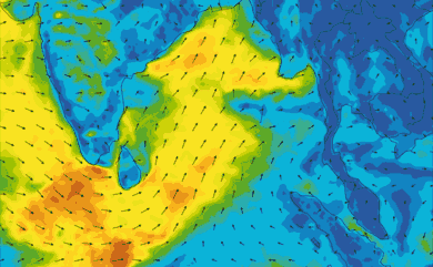 Prévisions de vent 1 à 10 jours Inde, Sri Lanka GFS 27km