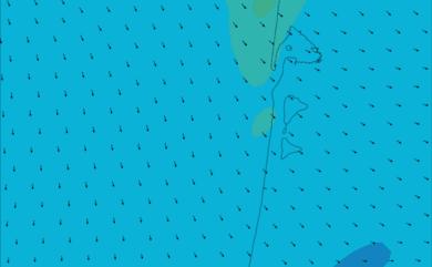 Prévisions de vent HD 96h Sud Gironde, Nord Landes WRF 5km
